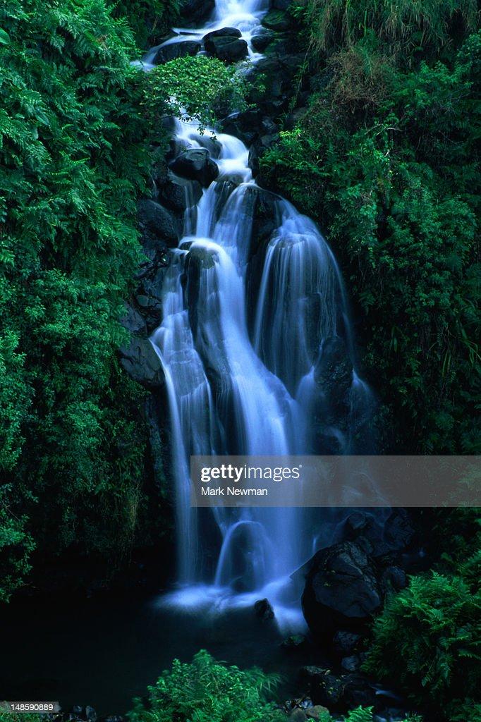 Tranquil waterfall on Hawaii's Big Island. : Stock Photo