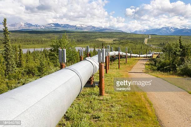 Trans-Alaska-Öl-Pipeline, Alaska