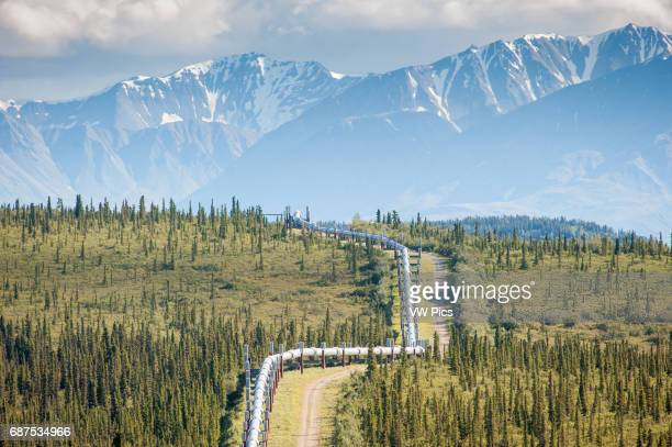 TransAlaska Pipeline running through landscape with Mountain range in the distance in Alaska