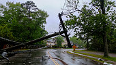 transformer on a electric poles and a tree laying across power lines over a road after Hurricane