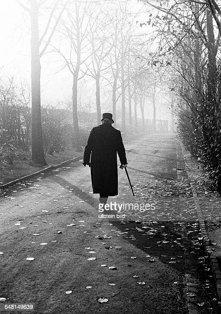 transitional period from autumn to winter symbolic older woman with walking stick goes for a walk over a graveyard completely dressed in black...