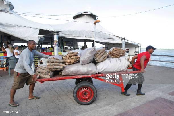 Transportation of Cassava in Amazon,Belém