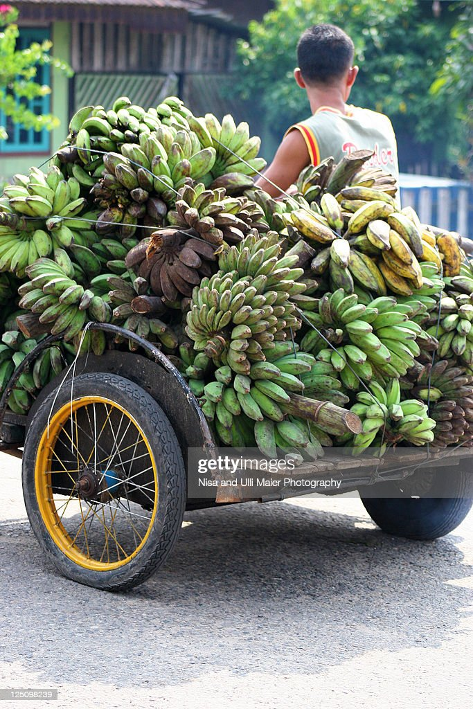Transporting bananas on motorbike in Indonesia. : Stock Photo