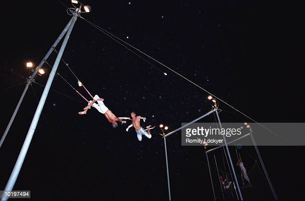 Trapeze artists performing catch, low angle view