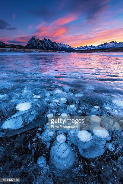 Trapped Bubble under a frozen lake