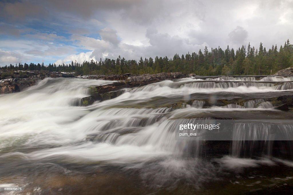 Trappstegsforsen waterfall : Stock Photo