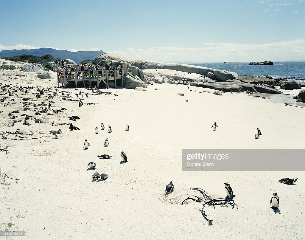 Travel and Landscapes : Stock Photo