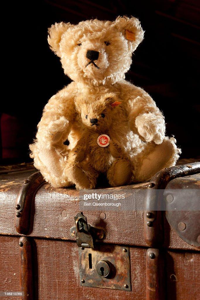 travel case and teddy bear : Stock Photo