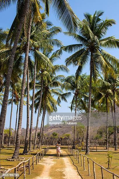 Travel in West Sumbawa.Indonesia.