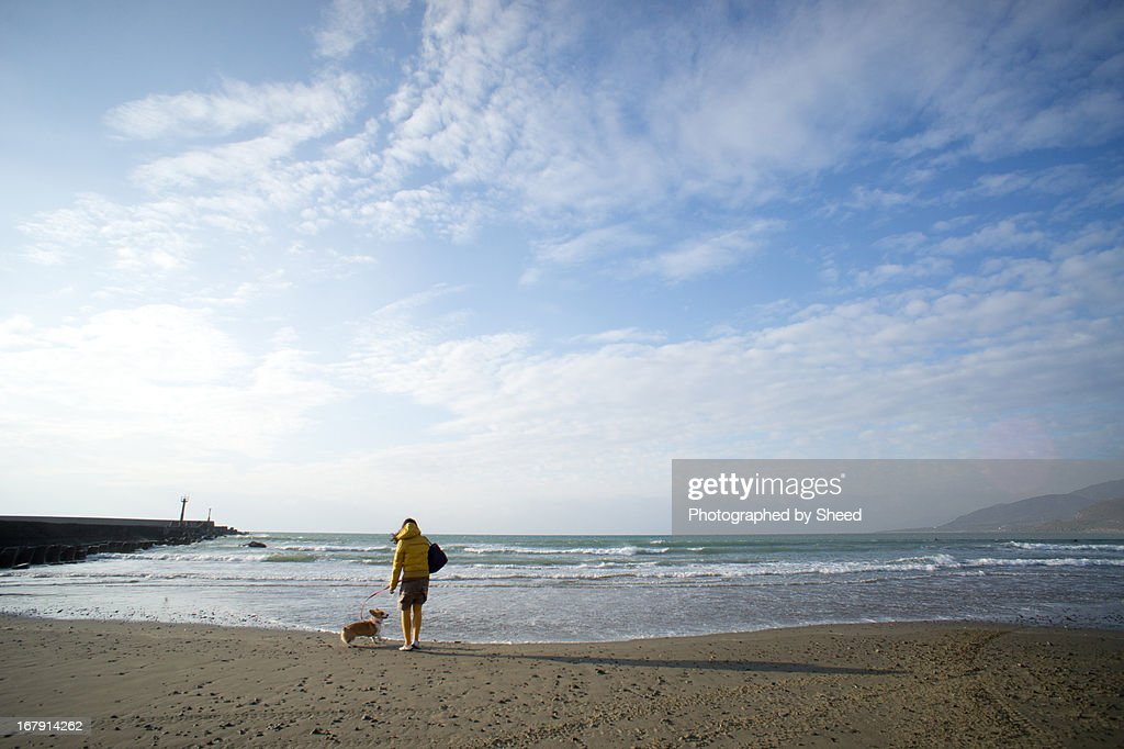 Travel with a dog : Stock Photo