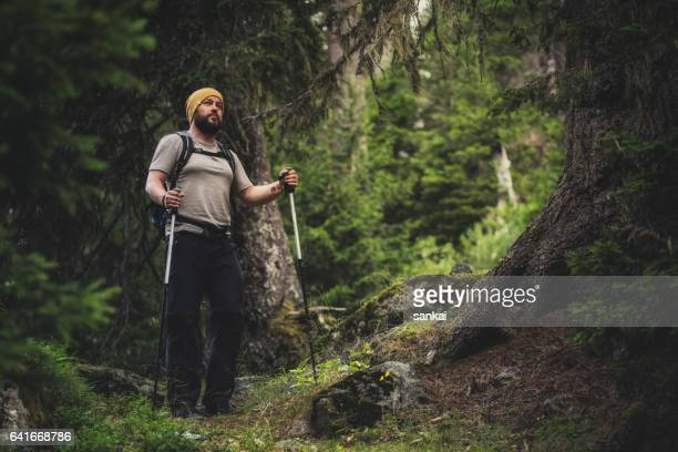 Traveler walks alone in the forest