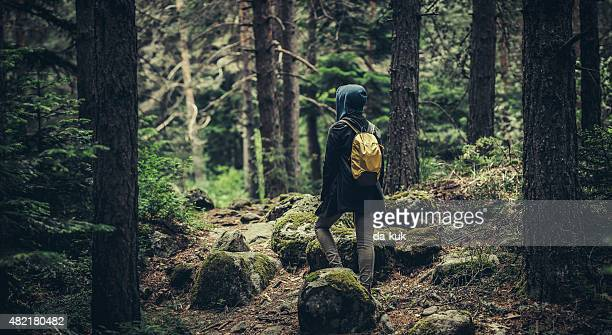 Traveler with backpack walking in a misty forest