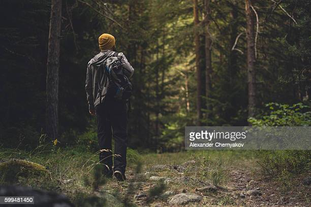 Traveler with backpack walks through the forest