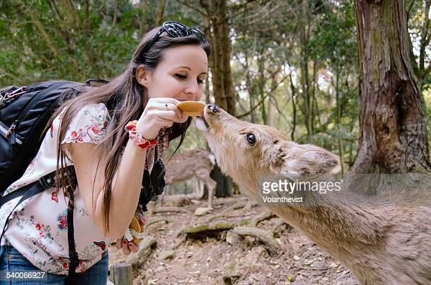 Traveler woman feeding a deer in Nara, Japan