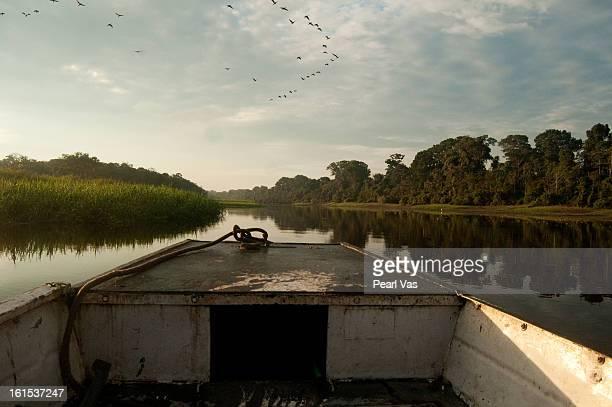 Traveling on river boat through Peruvian Amazon