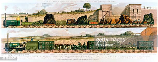 'Travelling on the Liverpool and Manchester Railway' 1831 Top goods train drawn by the locomotive 'Liverpool' Bottom cattle train drawn by the...