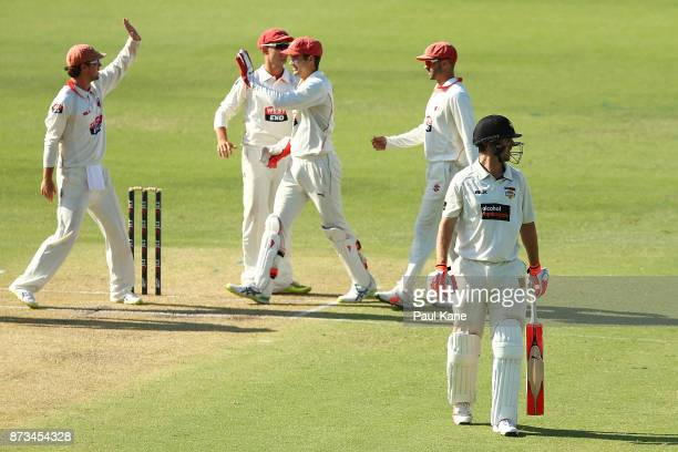 Travis Head and Alex Carey of South Australia celebrate the wicket of Mitchell Marsh of Western Australia during day one of the Sheffield Shield...