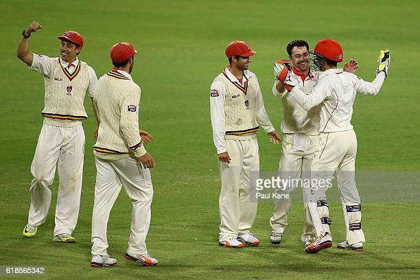 Travis Head of the Redbacks celebrates the wicket of Ashton Agar of the Warriors during day three of the Sheffield Shield match between Western...