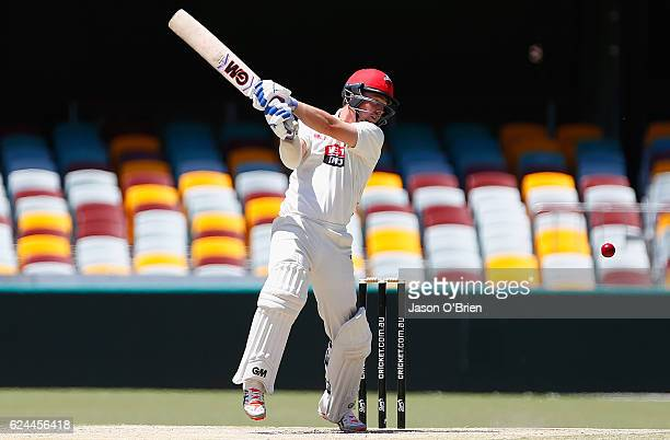 Travis Head of the Redbacks in action during day four of the Sheffield Shield match between Queensland and South Australia at The Gabba on November...