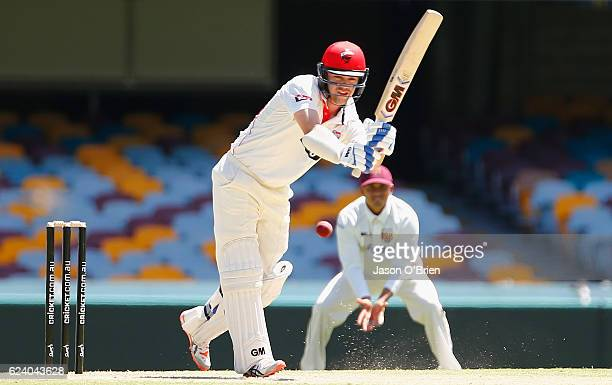 Travis Head of the Redbacks in action during day two of the Sheffield Shield match between Queensland and South Australia at The Gabba on November 18...