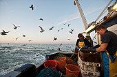 trawler fishing at night