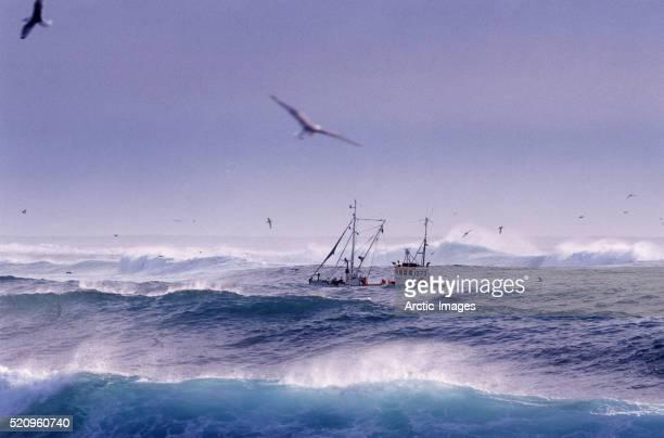 Trawler in High Seas