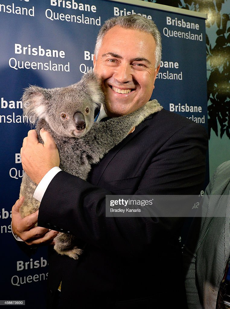 Treasurer <a gi-track='captionPersonalityLinkClicked' href=/galleries/search?phrase=Joe+Hockey&family=editorial&specificpeople=2961513 ng-click='$event.stopPropagation()'>Joe Hockey</a> is seen holding a Koala during an official walk through of the host venue the Brisbane Convention & Exhibition Centre on November 13, 2014 in Brisbane, Australia. World economic leaders will travel to Brisbane for the G20 Leadership Summit November 15-16.