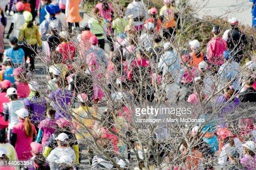Tree and marathon runners : Foto de stock