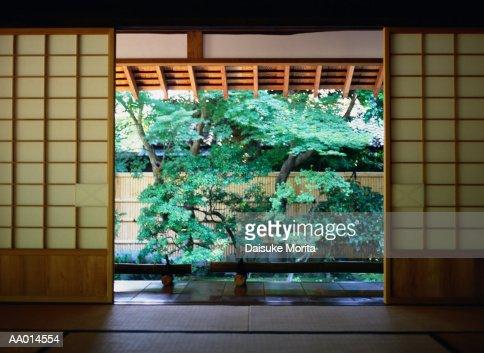 Tree Beyond Shoji Screens