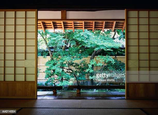 Tree Beyond Shoji Screens