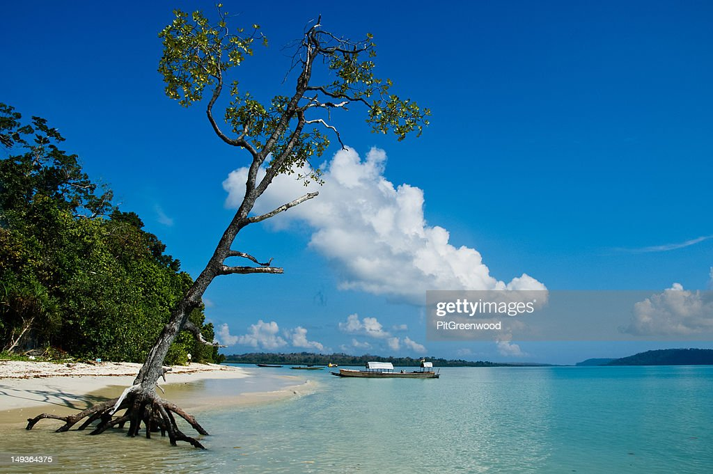Tree, clouds, boat blue sky on tropical beach : Stock Photo