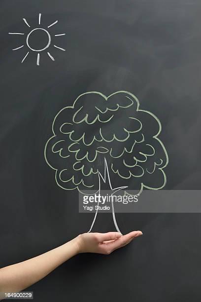 Tree drawn on the blackboard