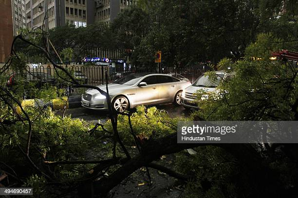 Tree fell on road obstructing traffic during sudden thunderstorm followed by rain at KG Marg on May 30 2014 in New Delhi India At least nine people...