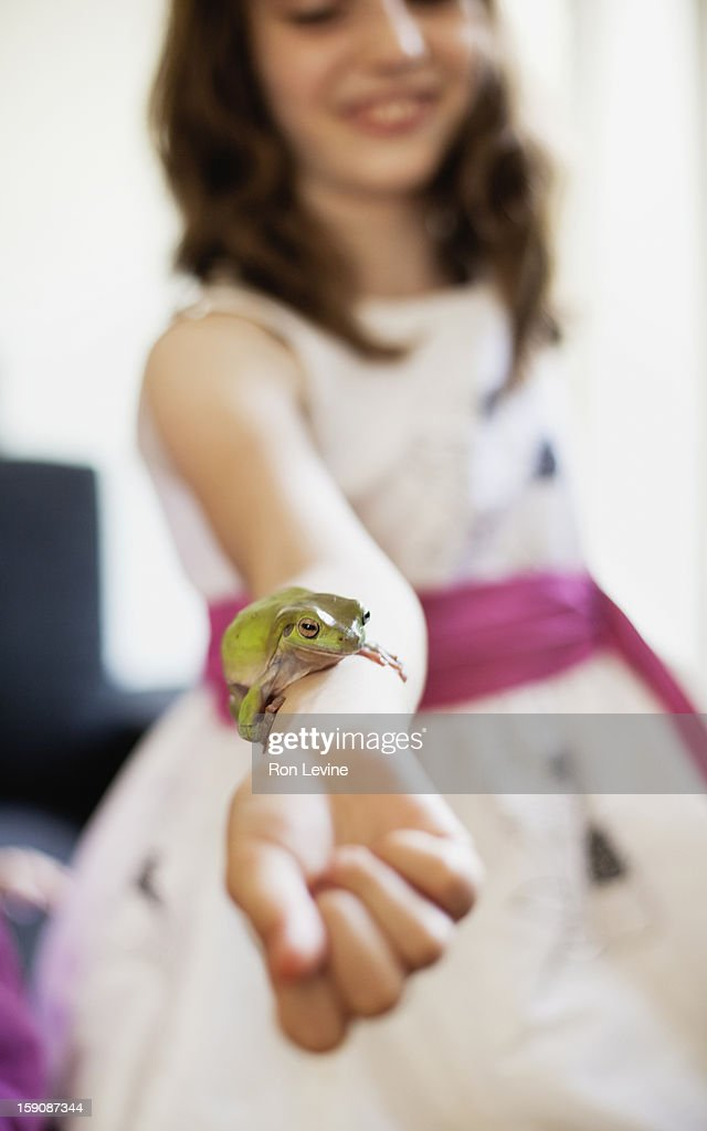 Tree frog resting on young girl's arm : Stock Photo