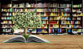 tree growing from book A big open book 3d render Success knowlage concept
