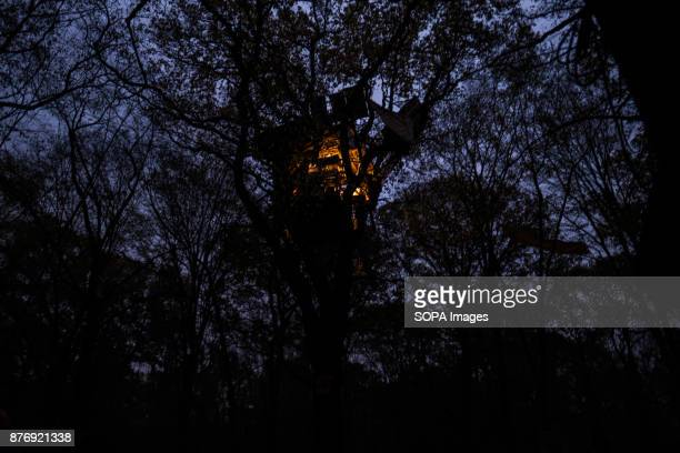 A tree house equipped with solar panels is lit at night Starting in 2012 the Hambach Forest occupation settlements have slowed the expansion of the...
