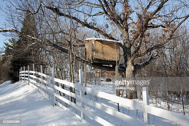 Tree House in Backyard by White Fence