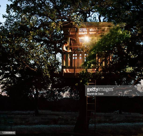 Tree house in evening