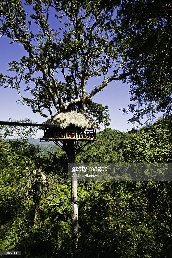 Tree house only accessible by cable north of Huay Xai. : Stock Photo