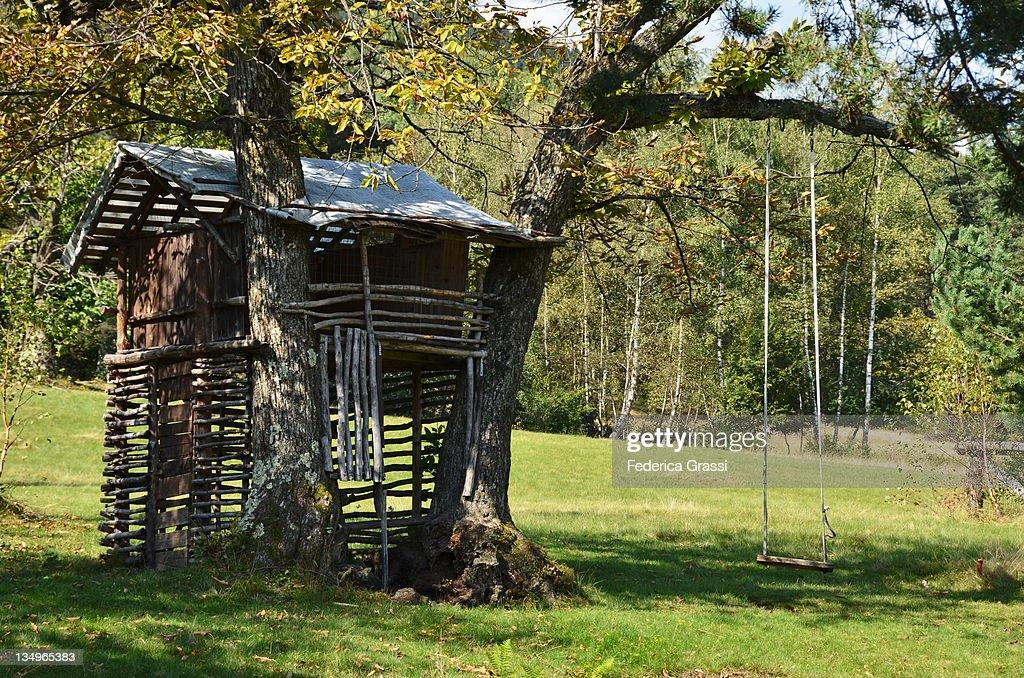 Tree house : Stock Photo
