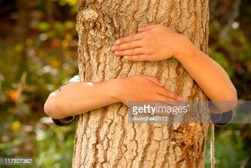 Tree Hugger : Stock Photo