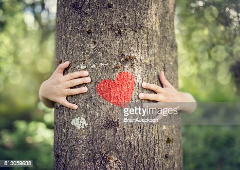Tree hugging, love nature : Stock Photo