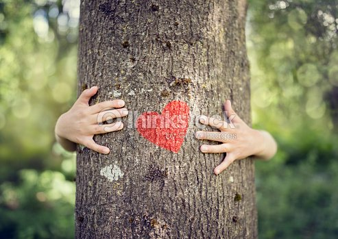 Tree hugging, love nature : Foto de stock