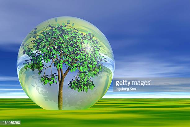 Tree in a bubble, symbolic image for protection of the environment, 3D graphics