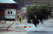 A tree is blown over outside Tulane Medical Center during the rains from Hurricane Isaac on August 29 2012 in New Orleans Louisiana The Category 1...