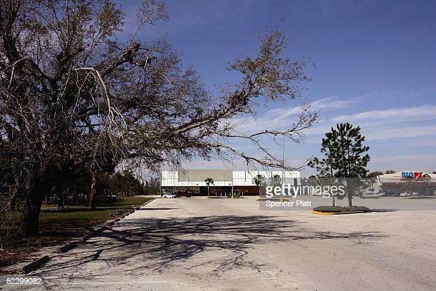 A tree juts out into a large parking lot March 7 2005 in Orlando Florida Florida one of the fastest growing states in the United States is losing...