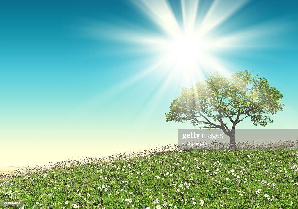 3D tree landscape : Stock Photo