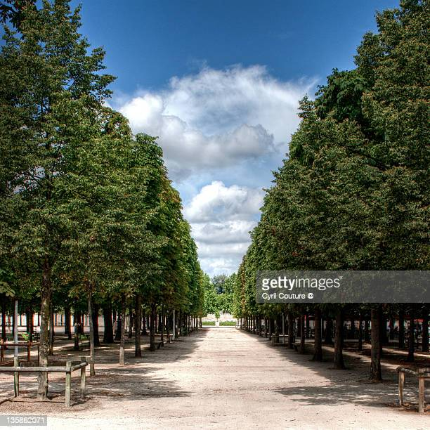 Louvre garden stock photos and pictures getty images for Jarden france
