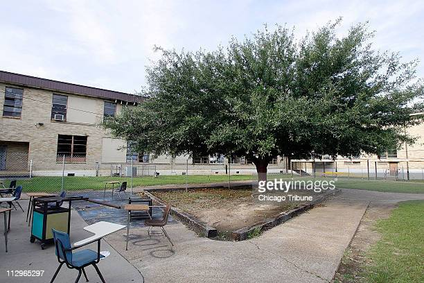 A tree on the campus of Jena High School is pictured on May 16 in Jena Louisiana Last September after a group of black students at the school asked...