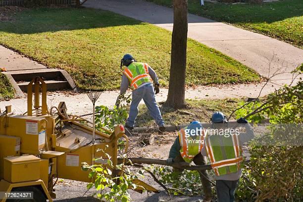 Baum Stutzen Service mit Häcksler und die Arbeiter auf die Straße